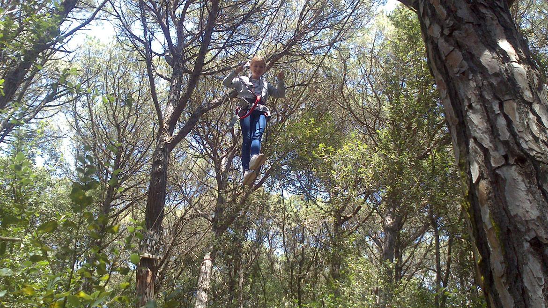 Activitat extraordinària al Bosc Vertical