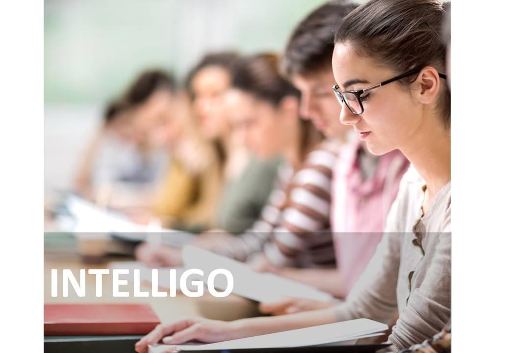 INTELLIGO-1.jpg